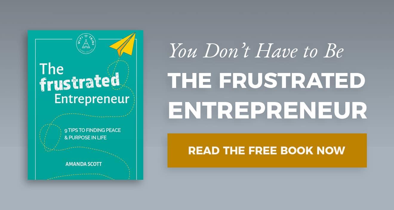 Download The Frustrated Entrepreneur Book